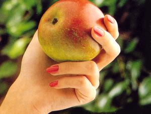 Healthy Nails, Healthy Diet